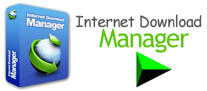 internet download manager coupon codes