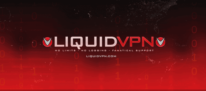 LiquidVPN Black Friday Deal