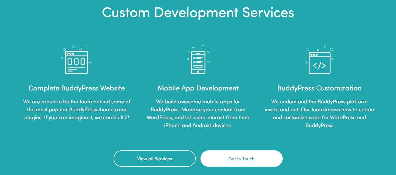 Custom development services buddyboss