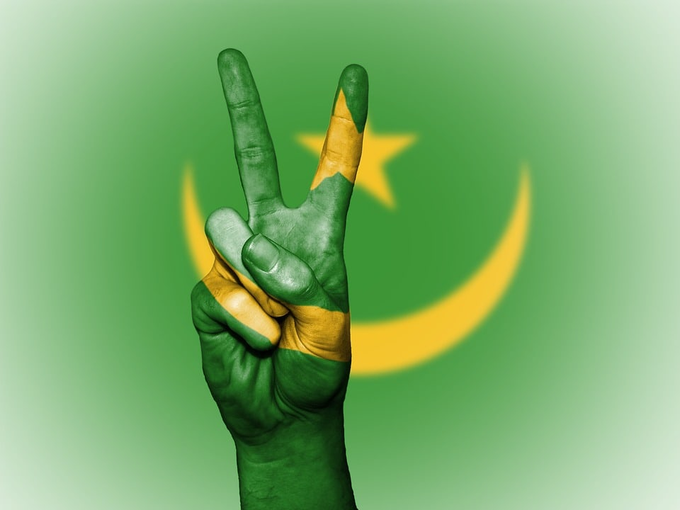 Mauritania services and security