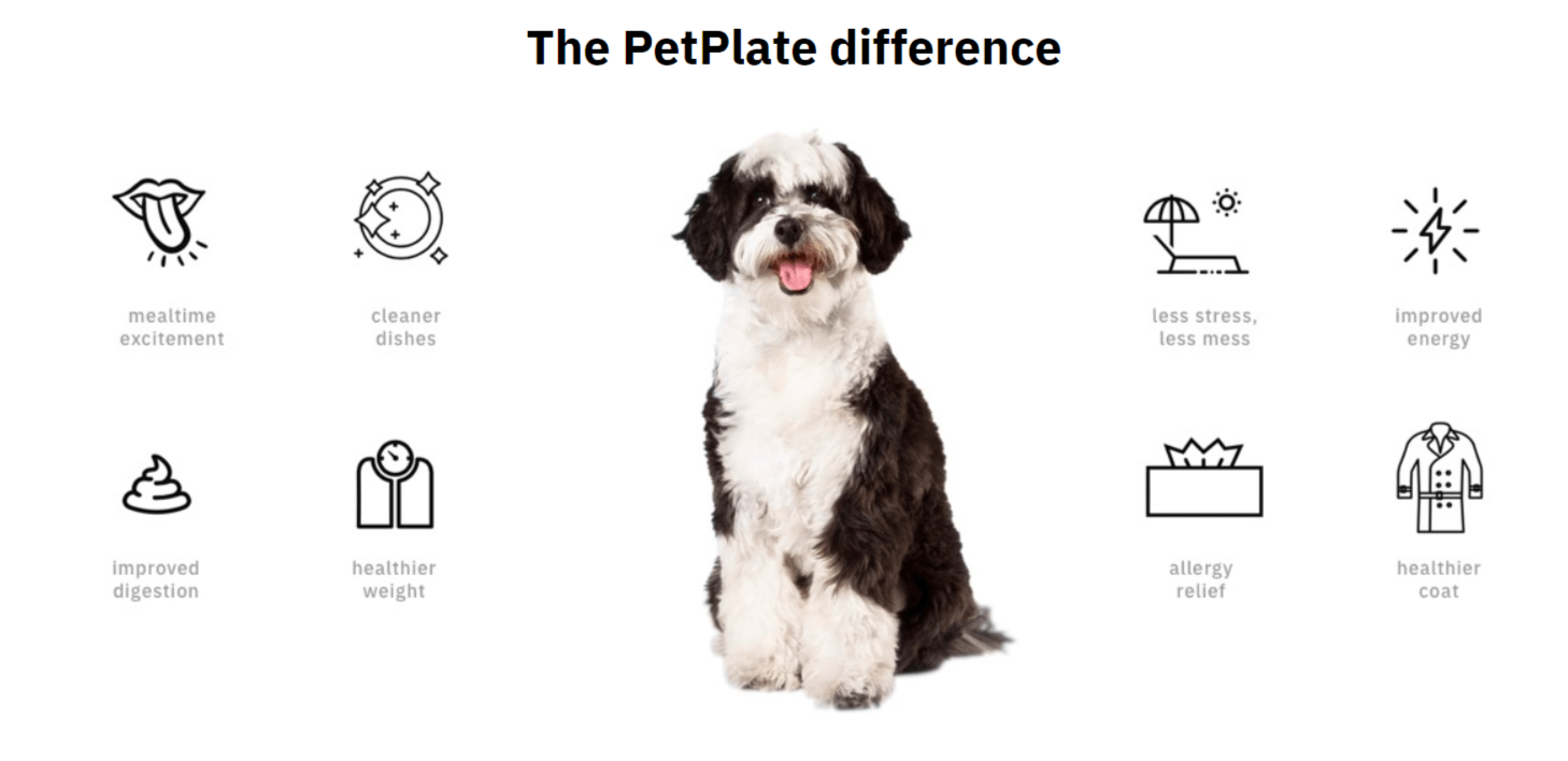 PetPlate Coupon Codes- Feel The Difference