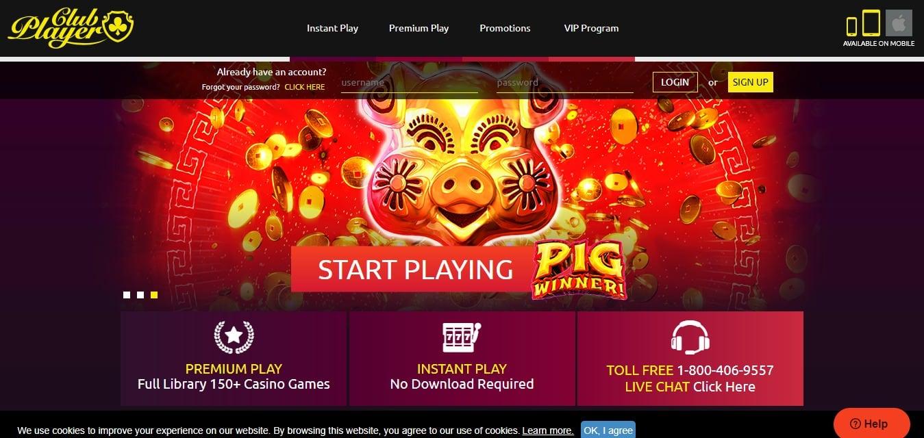 Club Casino Player
