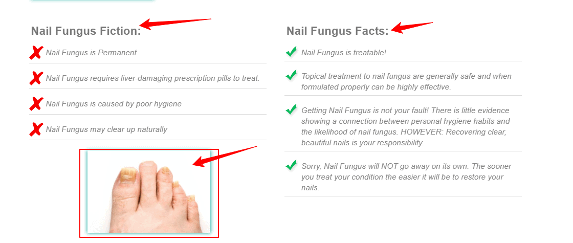 EmoniNail Review - About Nail Fungus – EmoniNail™ Nail Fungus Treatment