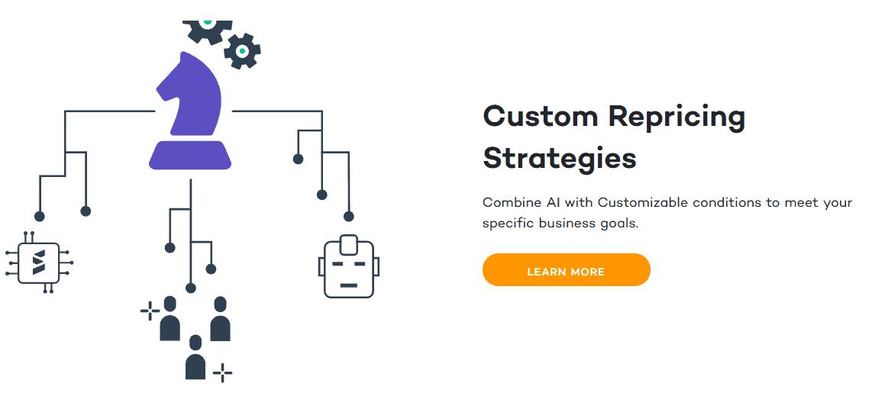 seller snap custom repricing strategies