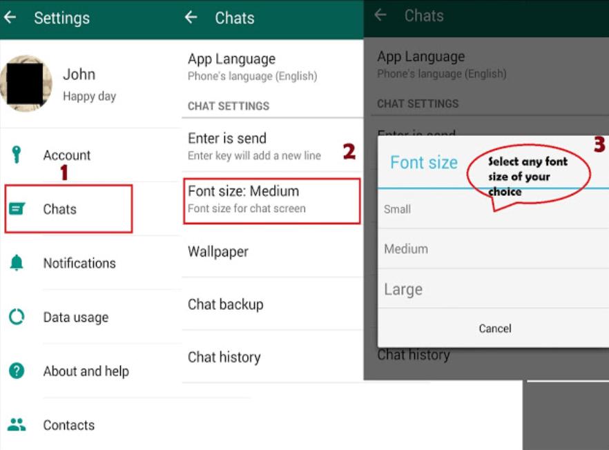 Change Font Style in WhatsApp Steps
